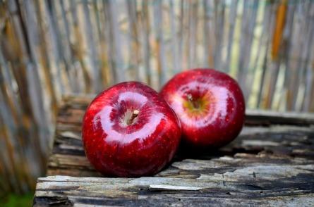apple-661734_640