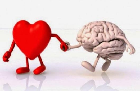 Αποτέλεσμα εικόνας για Επιστήμονες στη Σιβηρία δημιούργησαν φάρμακο για τα εγκεφαλικά και τις καρδιακές προσβολές