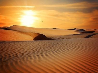 desert-790640_640