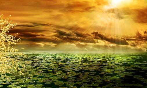 sunbeam-292987_640