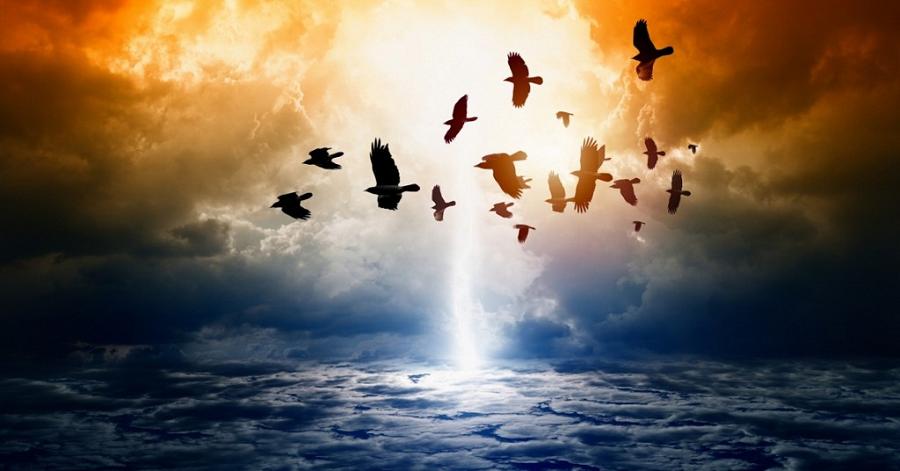 Σημεία των έσχατων καιρών (Π. Σεραφείμ Ρόουζ) | Σημεία Καιρών