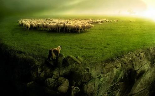 Αποτέλεσμα εικόνας για ανθρωποι προβατα